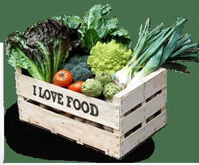 caja / cesta de verduras ecológicas: patatas, cebollas, zanahorias, calabacín, calabaza, tomate, legucha, pepino, pimientos, col, puerro, apio...