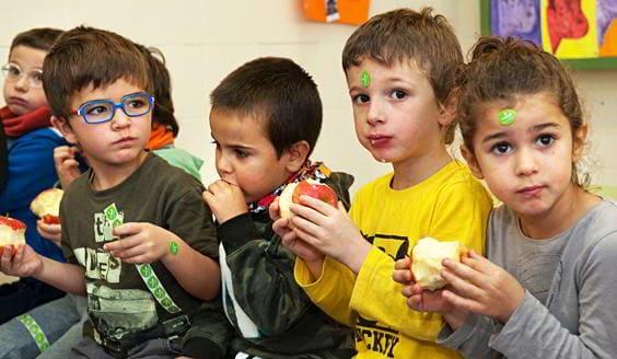 Productos ecológicos para escuelas, colegios, guarderias, etc.