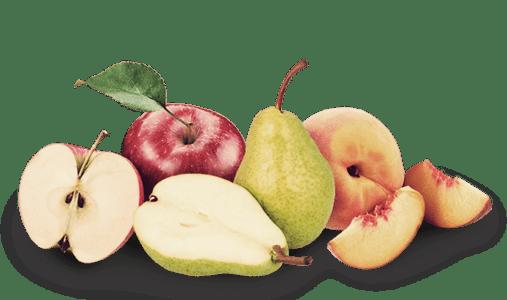 Fruta para empresas: manzanas, platanos, mandarinas, naranjas, fresas... todo ecológico!